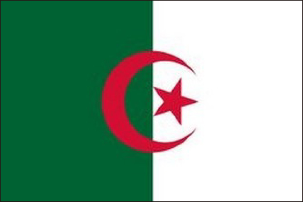 广州代办阿尔及利亚探亲签证